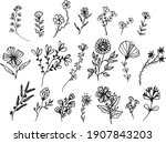 big set of hand drawn floral...   Shutterstock .eps vector #1907843203
