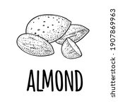 whole and half half almonds... | Shutterstock .eps vector #1907869963