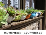 Teapots With Succulents On A...