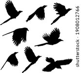 Flying Magpie Silhouettes  ...