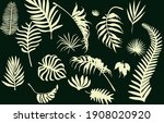 beautiful tropical leaves on... | Shutterstock .eps vector #1908020920