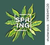 snake plant. houseplant. green... | Shutterstock .eps vector #1908349120