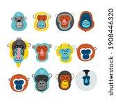 cute vector primates in flat... | Shutterstock .eps vector #1908446320