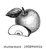 apple with leaf and slice of...   Shutterstock .eps vector #1908944416