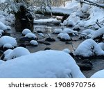 Winter Creek With Snow Covered...