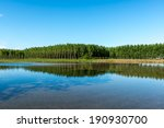 flooded rice field with poplars ... | Shutterstock . vector #190930700