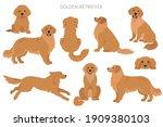 golden retriever dogs in... | Shutterstock .eps vector #1909380103