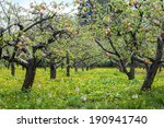 Peaches Trees Landscape  With...