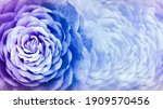 Floral Blue Background. A...