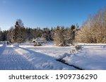 Winter Road Near Woods. Wooden...