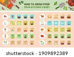 how to grow food from kitchen... | Shutterstock .eps vector #1909892389