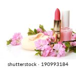 decorative cosmetics  | Shutterstock . vector #190993184