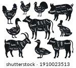 butcher shop scheme. meat cuts  ... | Shutterstock . vector #1910023513