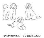 Set Of Dog Breeds Goldendoodle. ...