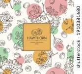 background with hawthorn ... | Shutterstock .eps vector #1910381680