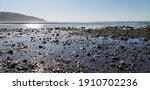 Scenery Of Malibu Lagoon State...