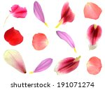Set Of 12 Assorted Flower...