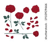 set of drawn roses bright red... | Shutterstock .eps vector #1910929666