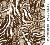 snake skin pattern texture... | Shutterstock .eps vector #1911043159