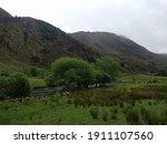 Green Landscape Of Wales...