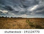 Dark Dramatic Landscape Stormy...