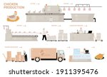 chicken production process... | Shutterstock .eps vector #1911395476