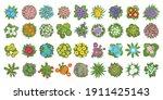 vector set. flowers. top view.... | Shutterstock .eps vector #1911425143
