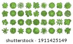 trees top view. different... | Shutterstock .eps vector #1911425149