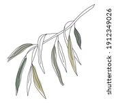 palm leaf line art. contour... | Shutterstock .eps vector #1912349026