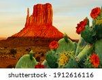 Blooming Cactus In Texas. Oil...