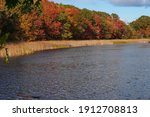 View Of Colorful Autumn Foliage ...