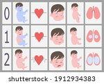 apgar scale.assessment of a...   Shutterstock .eps vector #1912934383