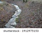 Flooded Stream Led To A Narrow...