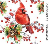 Cardinal Birds And Fir Branch...