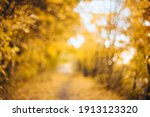 Orange Autumn Bokeh Background...