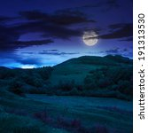 mountain summer landscape. trees near meadow and forest on hillside under night sky with clouds in moon light - stock photo