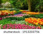 Floral Background   Fresh...