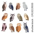 Collection Of Cute Cartoon Owls....