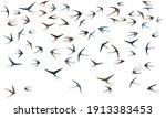 flying swallow birds...   Shutterstock .eps vector #1913383453