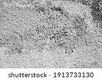 grunge wall background. old dry ... | Shutterstock . vector #1913733130