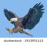 bald eagle winged flying swoop...   Shutterstock . vector #1913951113