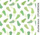fern or palm green leaves...   Shutterstock .eps vector #1914085606