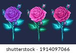 blossom roses set. floral... | Shutterstock .eps vector #1914097066