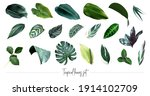 tropical leaves vector big... | Shutterstock .eps vector #1914102709