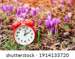 Classic Alarm Clock Over Spring ...
