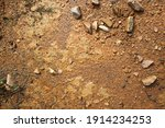 wet ground  yellow soil and... | Shutterstock . vector #1914234253