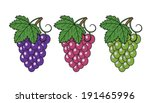 bunches of grapes. vector...   Shutterstock .eps vector #191465996