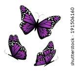 three butterflies in purple...