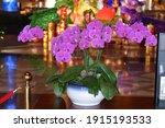Qingdao  Shandong  China  ...