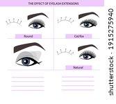 eyelash extension infographics. ...   Shutterstock .eps vector #1915275940
